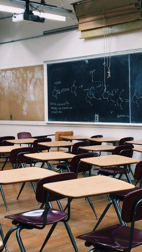 Conheça as 20 melhores escolas públicas de B.C.