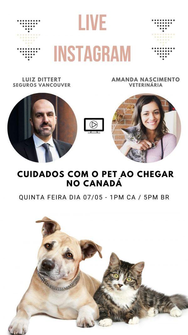 Live com Amanda Nascimento – Cuidados com o Pet no Canadá
